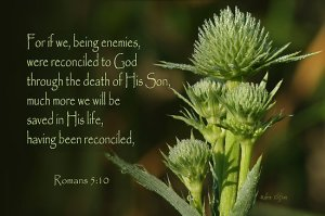 Romans 5 10