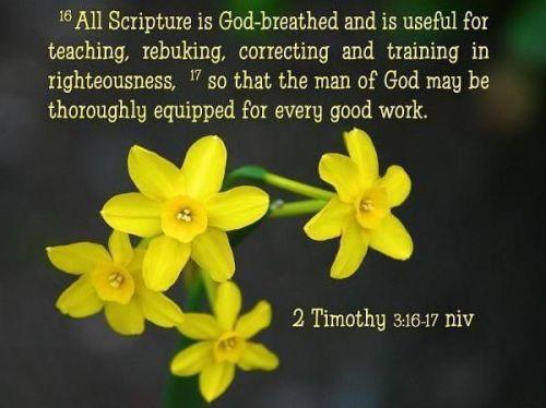 12 APR 2017 2 Timothy 3 16-17